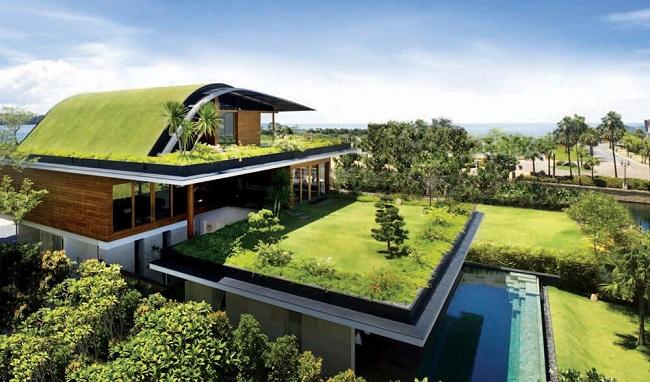 سقف سبز